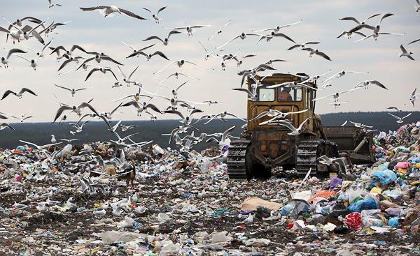 карта мусорных свалок